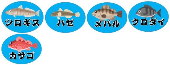 『形原漁港:かたはらぎょこう』の釣り場情報(駐車場・釣れる魚)