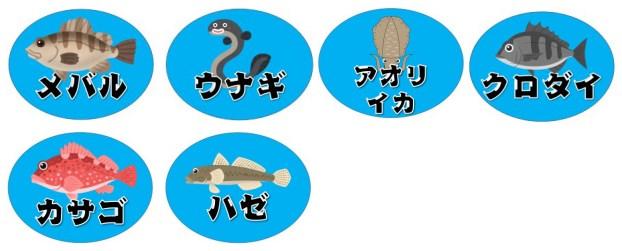 【家族におすすめ♪】『田原市泉港』の釣り場ガイド(駐車場・トイレ・釣れる魚)