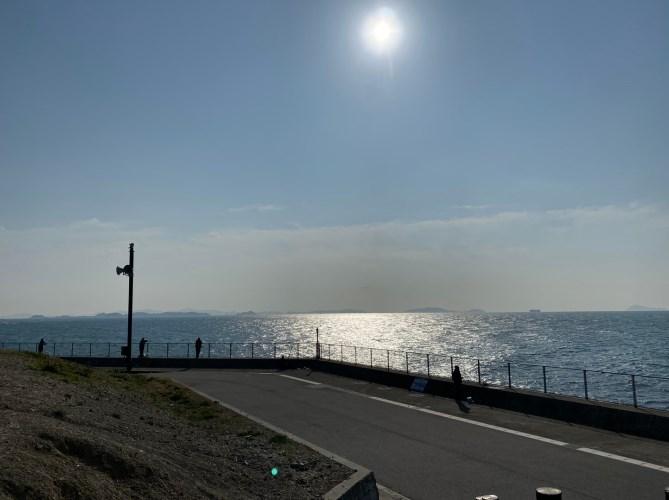 【完全攻略】『豊浜港&豊浜海釣り公園』の釣り場ガイド(駐車場・トイレ・釣れる魚)