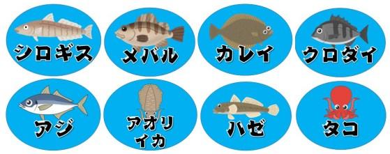 【超人気スポット】『豊浜海釣り公園』の釣り場ガイド(駐車場・トイレ・釣れる魚)