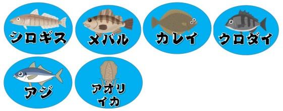 【南知多の穴場】『山海漁港:やまみぎょこう』の釣り場ガイド(駐車場・釣れる魚)