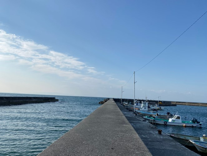 【南知多の穴場】『山海漁港&山海海水浴場』の釣り場ガイド(駐車場・釣れる魚)