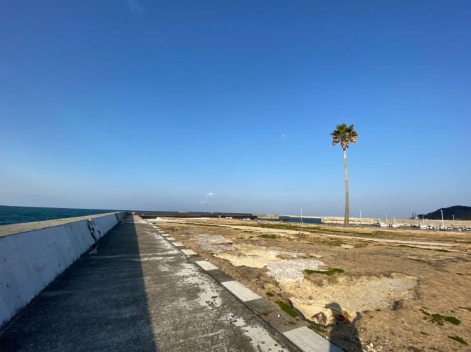 『内海新港&内海港緑地公園』の釣り場ガイド(駐車場・トイレ・釣れる魚)