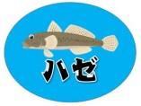 【浜名湖】『新川・宇布見橋周辺』の釣り場ガイド