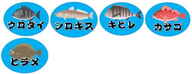 【浜名湖1番航路エリア】『渚園キャンプ場』周辺の釣り場ガイド(アクセス・釣れる魚)