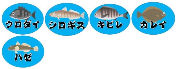 【浜名湖南部】『村櫛海水浴場』周辺の釣り場ガイド(釣れる魚・駐車場・トイレ)