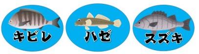 【浜名湖・細江湖エリア】『葭本川周辺』の釣り場ガイド(駐車場・釣れる魚)