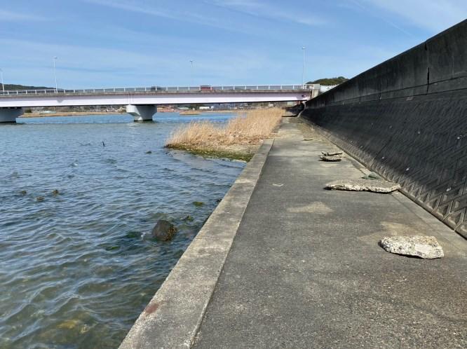 【浜名湖・細江湖】『都田川周辺エリア』の釣り場ガイド(釣れる魚・駐車場)