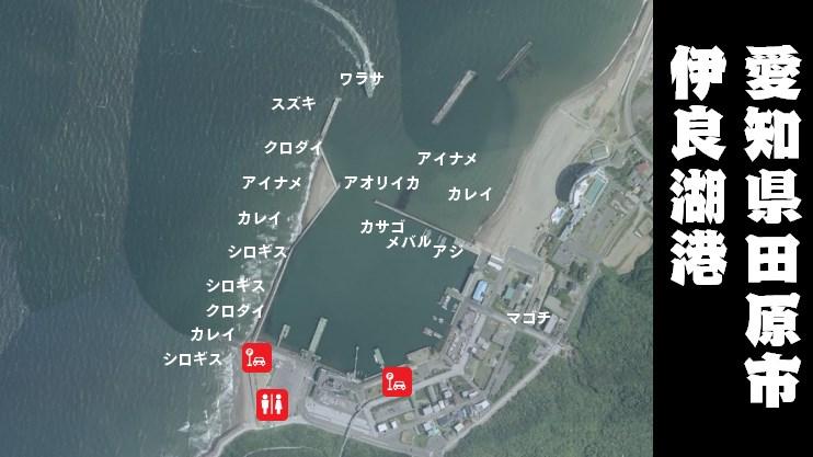 【初心者におすすめ】『伊良湖港:いらごこう』の釣り場ガイド(駐車場・トイレ・釣れる魚)