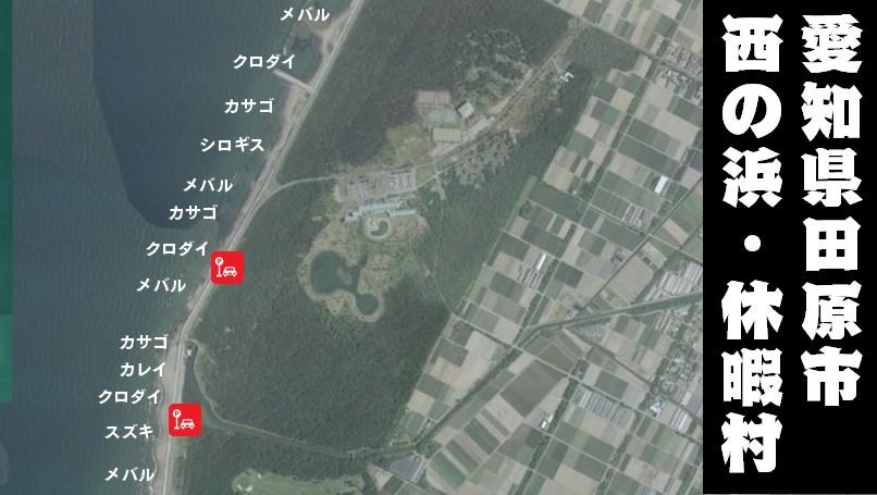 【田原市】『西の浜・休暇村下』の釣り場ガイド(駐車場・トイレ・釣れる魚)