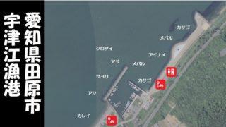『宇津江漁港・海水浴場|田原市』の釣り場ガイド(駐車場・トイレ・釣れる魚)