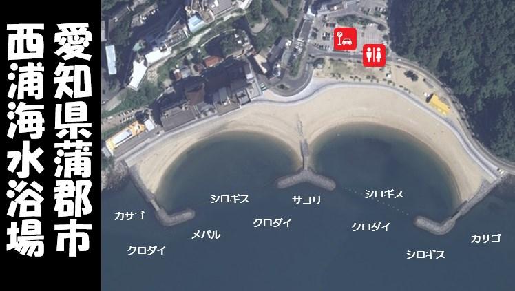 【根魚を狙う|蒲郡市】『西浦海水浴場』の釣り場情報ガイド(住所・駐車場・釣れる魚)