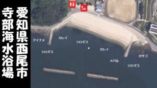『寺部海水浴場:てらべ|西尾市』の釣り場情報ガイド(住所・駐車場・釣れる魚)