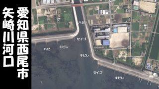 『西尾市|矢崎川河口:やざきがわかこう』の釣り場ガイド(駐車場・トイレ・釣れる魚)