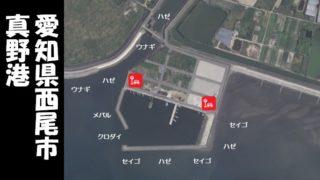 【ハゼの人気スポット|西尾市】『真野港:まのこう』の釣り場情報(駐車場・釣れる魚)