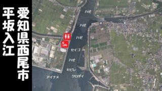 【西尾市】『平坂入江:へいさかいりえ』の釣り場情報(住所・駐車場・釣れる魚)