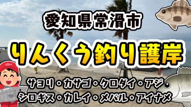 【常滑の人気エリア】『りんくう釣り護岸・りんくうビーチ』の釣り場ガイド(駐車場・トイレ・釣れる魚)