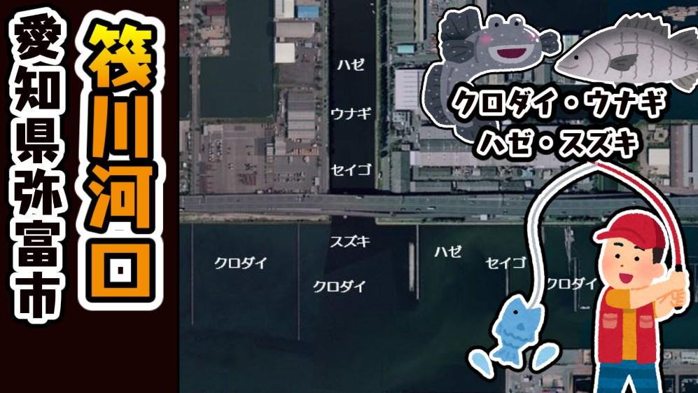 【ウナギが狙える!】『弥富市筏川河口:いかだがわかこう』の釣り場ガイド(駐車場・釣れる魚)