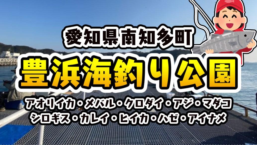 【完全攻略】『大人気!豊浜港&豊浜海釣り公園』の釣り場ガイド(駐車場・トイレ・釣れる魚)