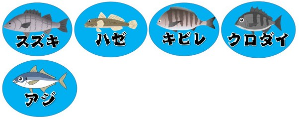 『ホテルグリーンプラザ浜名湖~三ケ日青年の家』付近の釣り場ガイド(駐車場・トイレ・釣れる魚)