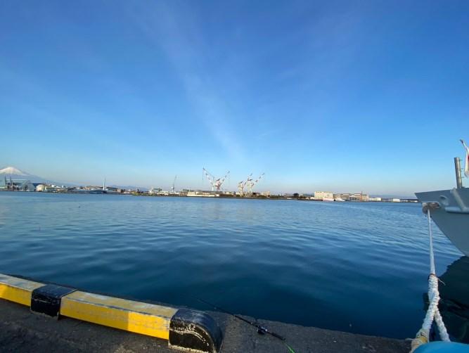 【清水港②】『静岡市岸壁・静清浄化センター』の釣り場ガイド(釣れる魚・駐車場・トイレ)