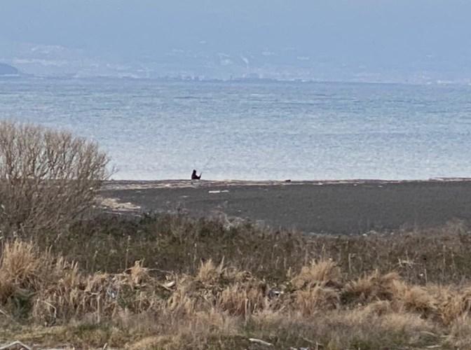 【清水エリア】『三保飛行場』周辺の海釣りガイド(釣れる魚・駐車場・トイレ)