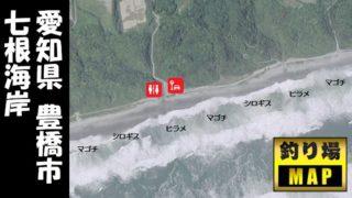 【愛知県豊橋市】『七根海岸』の海釣りガイド(釣れる魚・駐車場・トイレ)