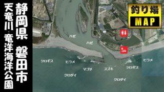 【静岡県磐田市】『天竜川・竜洋海洋公園』の海釣りガイド(釣れる魚・駐車場・トイレ)
