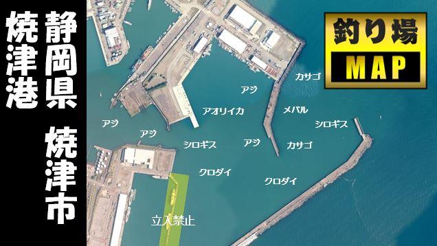 【駿河湾エリア】『焼津港』の海釣りガイド(釣れる魚・駐車場・トイレ)