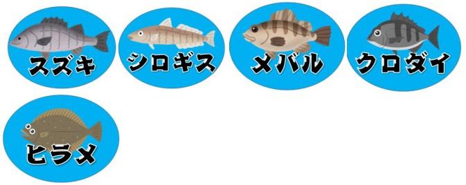 【静岡市駿河区】『広野海岸公園』の海釣りガイド(釣れる魚・駐車場・トイレ)