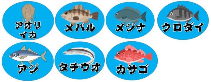【静岡県焼津市】『ふぃしゅーな』の海釣りガイド(釣れる魚・駐車場・トイレ)