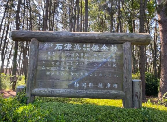 【静岡県焼津市】『石津浜公園』の海釣りガイド(釣れる魚・駐車場・トイレ)