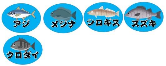 【焼津市】『田尻浜海岸~藤守海岸』の海釣りガイド(釣れる魚・駐車場・トイレ)