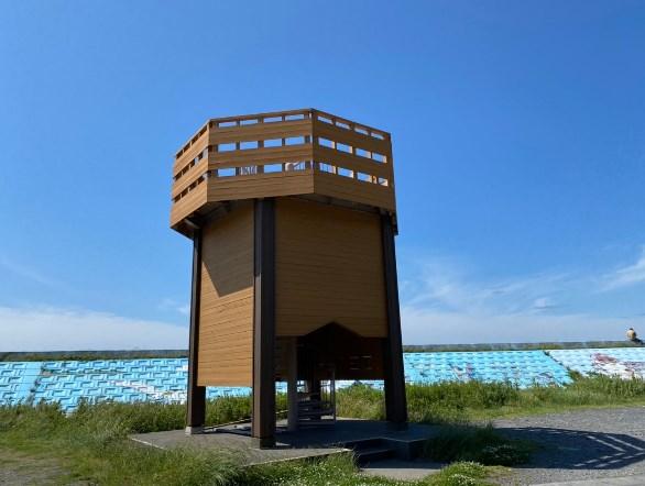 【焼津市】『大井川港・大井川河口野鳥園』の海釣りガイド(釣れる魚・駐車場・トイレ)