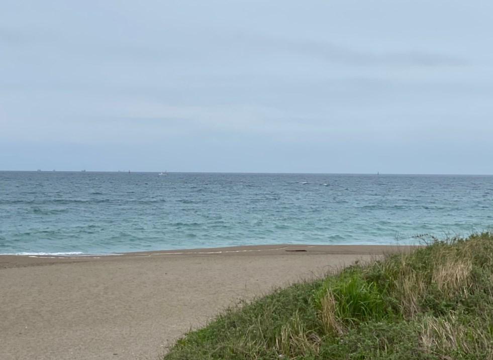 【愛知県田原市】『伊良湖岬』の海釣りガイド(釣れる魚・駐車場・トイレ)