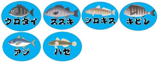 【静岡県】『吉田港:よしだこう』の海釣りガイド(釣れる魚・駐車場・トイレ)