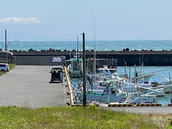 【静岡県牧之原市】『坂井港』の海釣りガイド(釣れる魚・駐車場・トイレ)