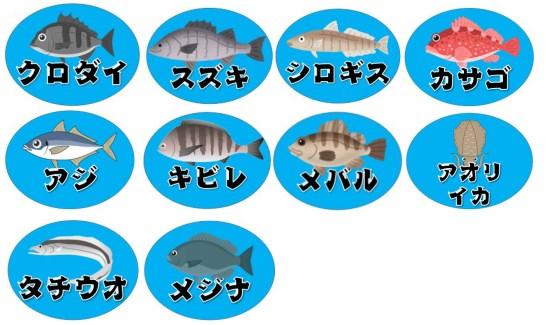 【静岡県駿河湾】『マリンパーク御前崎』の海釣りガイド(釣れる魚・駐車場・トイレ)