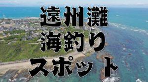 【遠州灘エリア】『愛知県~静岡県』のおすすめ海釣り16スポットまとめ