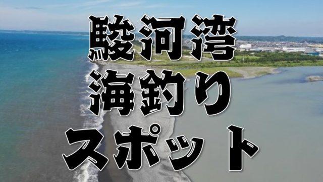 『静岡駿河湾エリア:御前崎~沼津市』おすすめ海釣り32スポットまとめ【永久保存版】