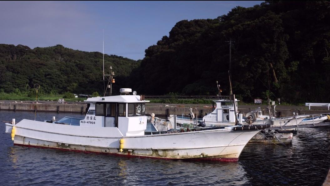 【愛知県西尾市】『佐久島』おすすめ海釣りスポット3カ所の完全攻略ガイド