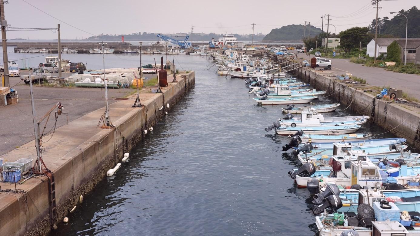 【釣れる魚が一目でわかる】『篠島』のおすすめ海釣りスポットまとめ(篠島漁港・釣り天国・木島)