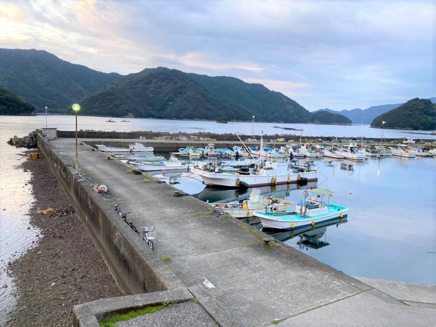 【三重県南伊勢町】『古和浦港(こわうらこう)』の海釣りガイド(釣れる魚・駐車場・トイレ)