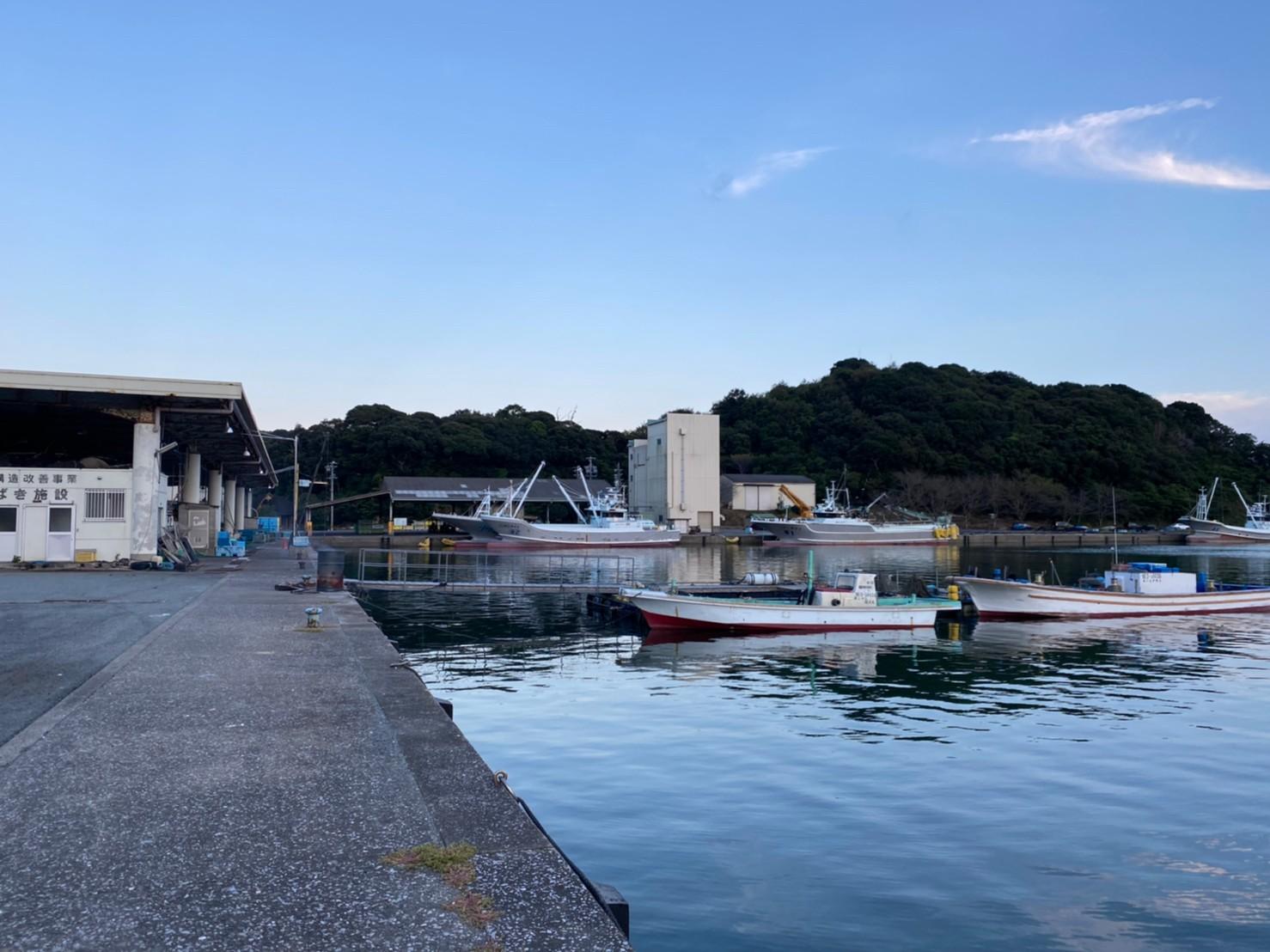 【三重県南伊勢町】『贄浦漁港(にえうらぎょこう)』の海釣りガイド(釣れる魚・駐車場・トイレ)