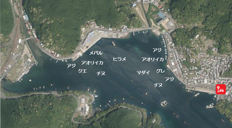【三重県尾鷲市|水深が深い】『九鬼漁港(くきぎょこう)』の海釣りガイド(釣れる魚・駐車場・トイレ)
