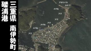 【三重県南伊勢町】『礫浦港|さざらうらこう』の海釣りガイド(釣れる魚・駐車場・トイレ)
