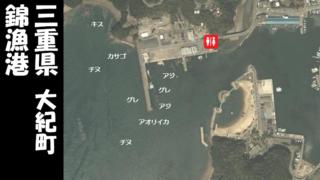 【三重県大紀町】『錦漁港』の海釣りガイド(釣れる魚・駐車場・トイレ)