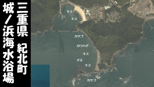 【三重県紀北町】『城ノ浜海水浴場(じょうのはま)』の海釣りガイド(釣れる魚・駐車場・トイレ)