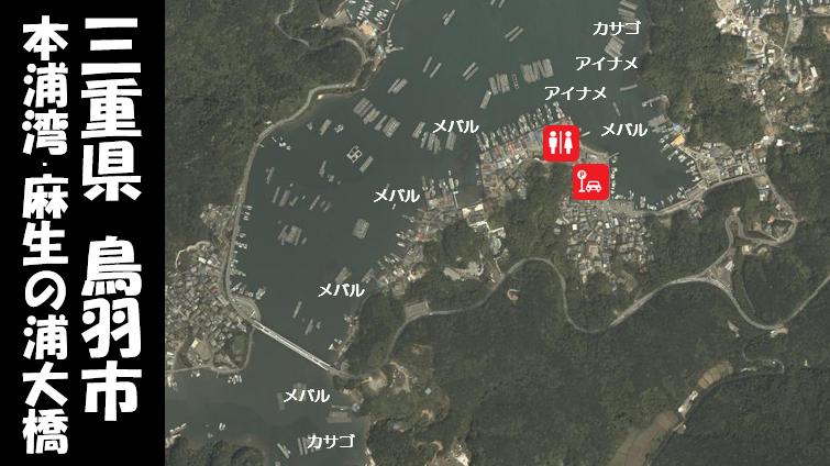 【三重県鳥羽市】『本浦湾・麻生の浦大橋』の海釣りガイド(釣れる魚・駐車場・トイレ)