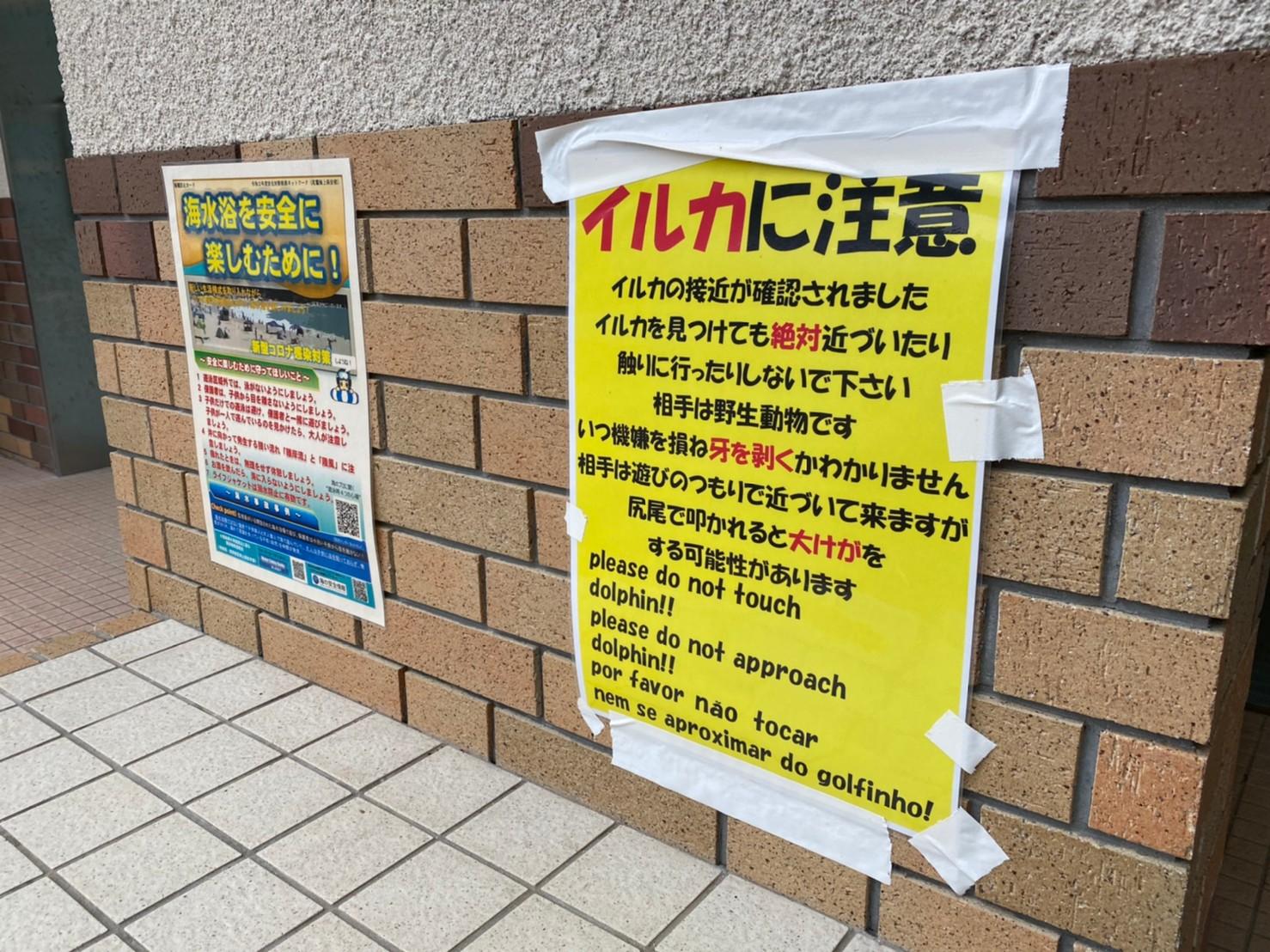 【三重県尾鷲市】『三木里海水浴場』の海釣りガイド(釣れる魚・駐車場・トイレ)